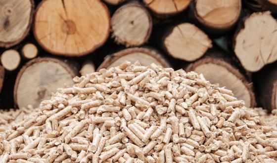 Rbb Startseite Ihr Starker Handelspartner Für Bio Brennstoffe